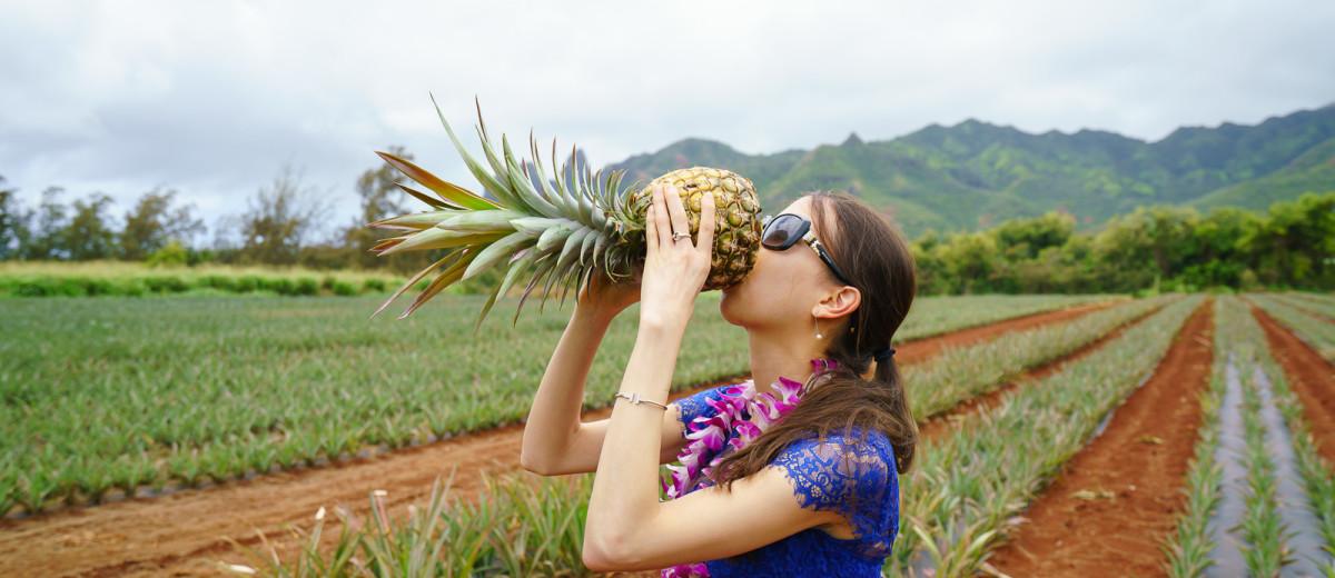 Hawaii Highlights